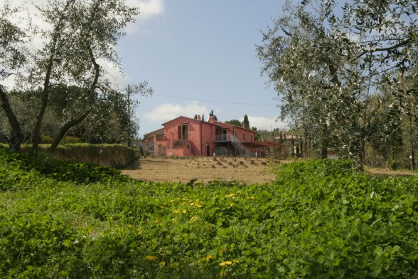 Bauernhof Terricciola