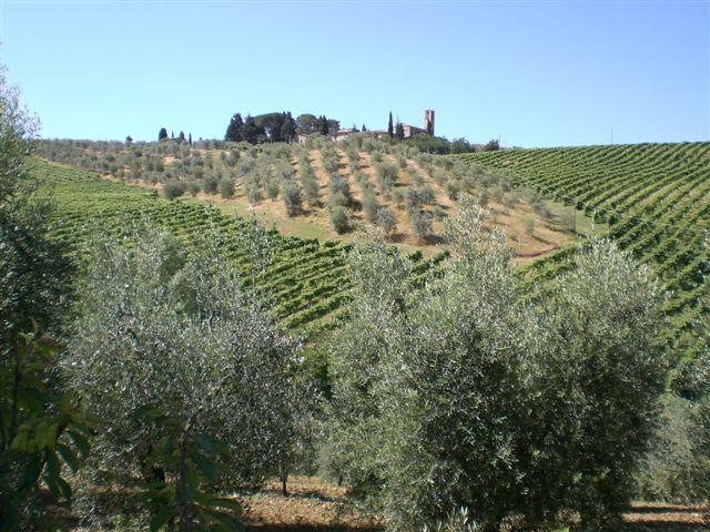 Agriturismo San Gimignano
